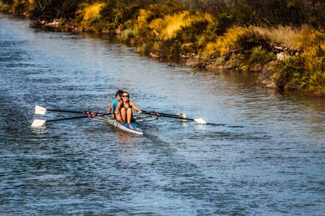 10 Best Rowing Machines Reviewed - 2019 Picks